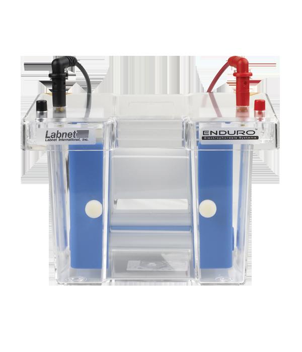 enduro� vertical gel electrophoresis system labnet